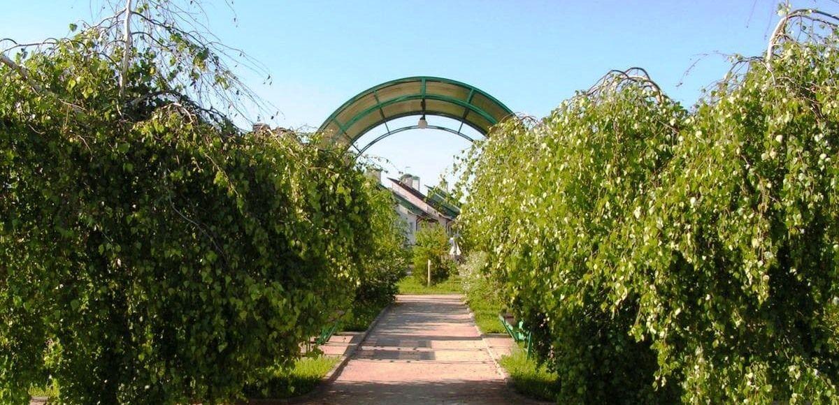 Аллея в парке микрорайон Золотые Купола